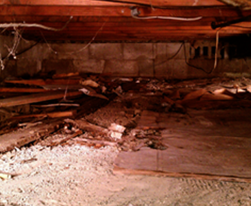 Crawlspace Damage